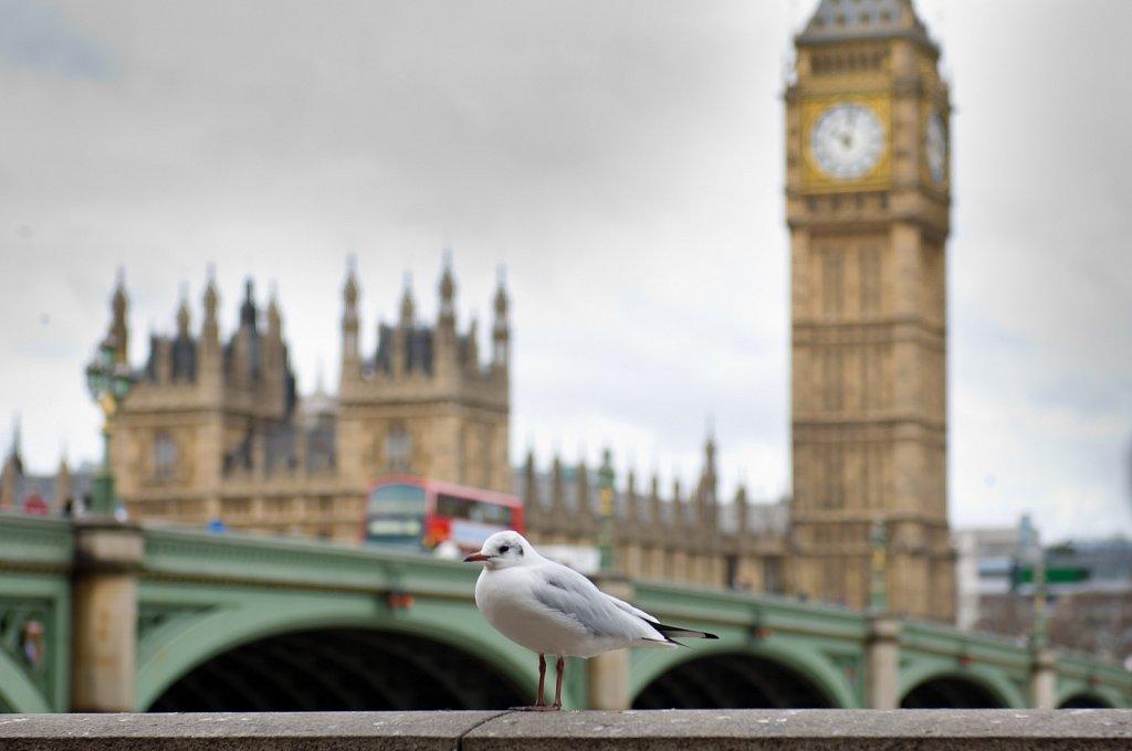 2012-London-weekend-5008.jpg